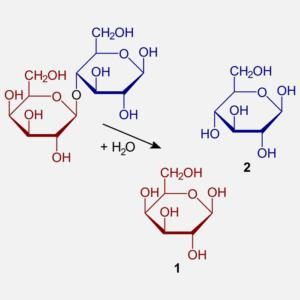 Lactose-formula